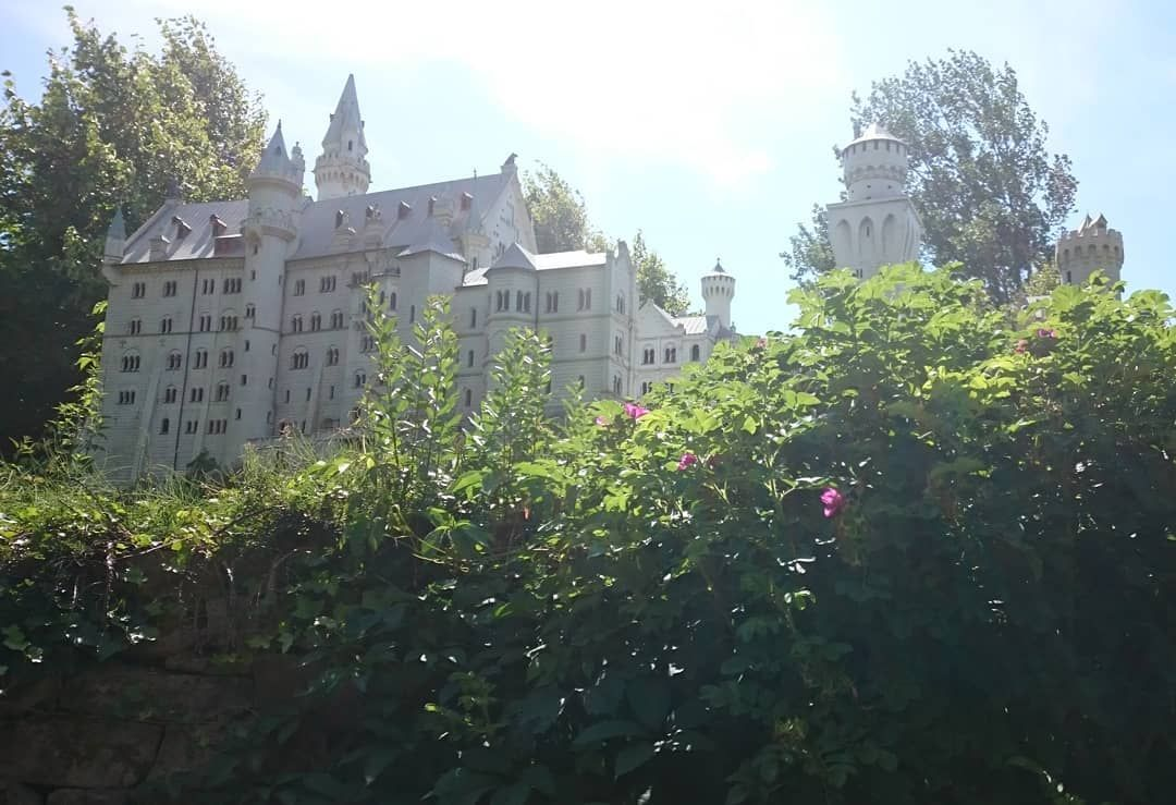 Ein Zugewuchertes Schloss Neuschwanstein Das Hat Mir So Gut Gefallen Dass Ich Es Gern Teilen Wollte Meingarten Instagram Posts House Styles Insta Saver