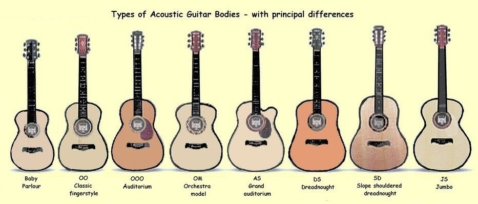 Acoustic Guitar Body Types Jpg 933 398 Guitar Acoustic Guitar Guitar Lessons Scales
