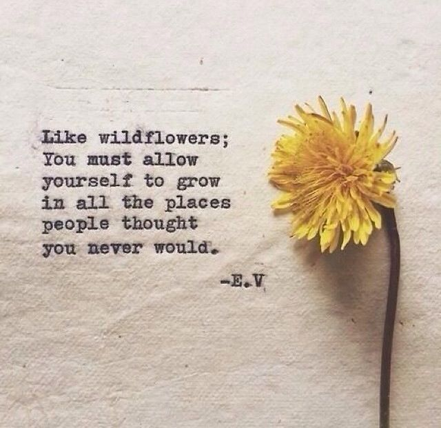 like wildflowers, you must allow yourself to grow...