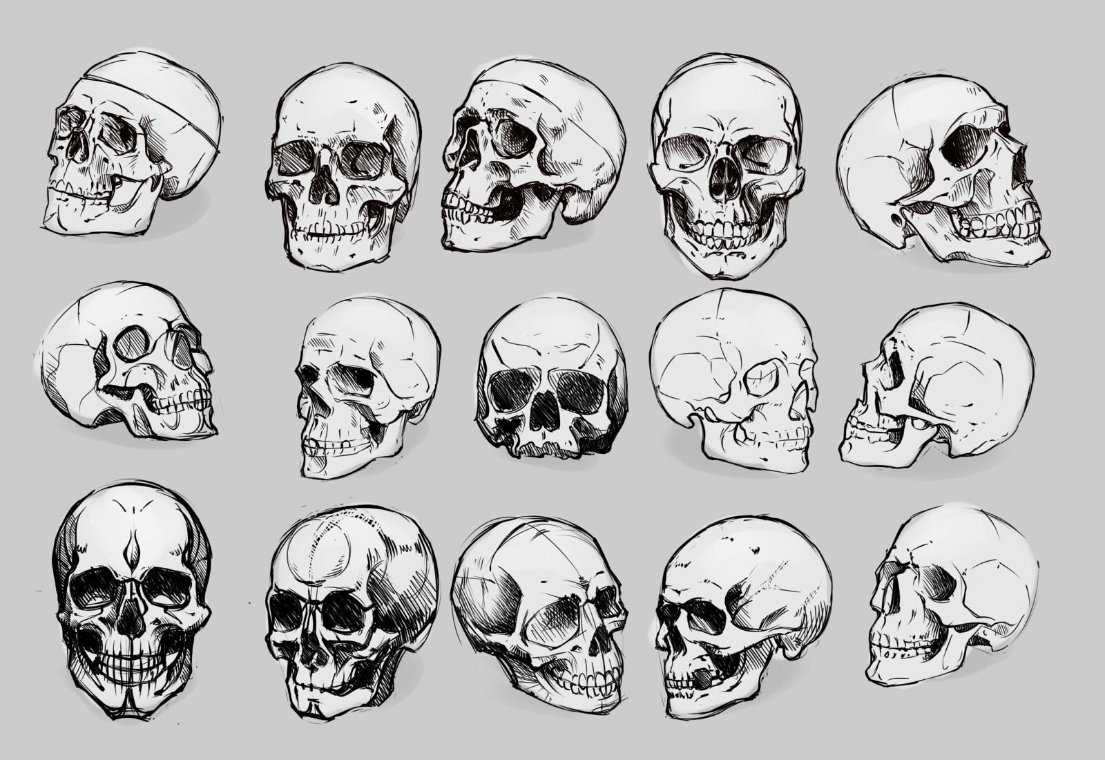 картинки черепа со всех сторон крестьяне всегда стремились