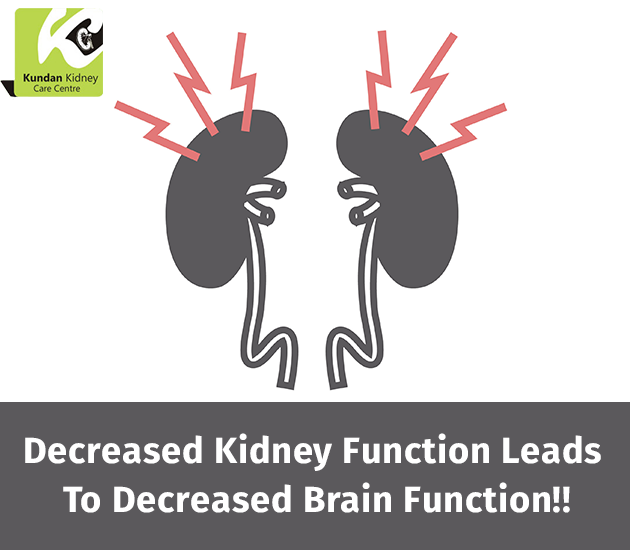 When Kidneys Fail To Fulfil Their Function It Affects The Brain And