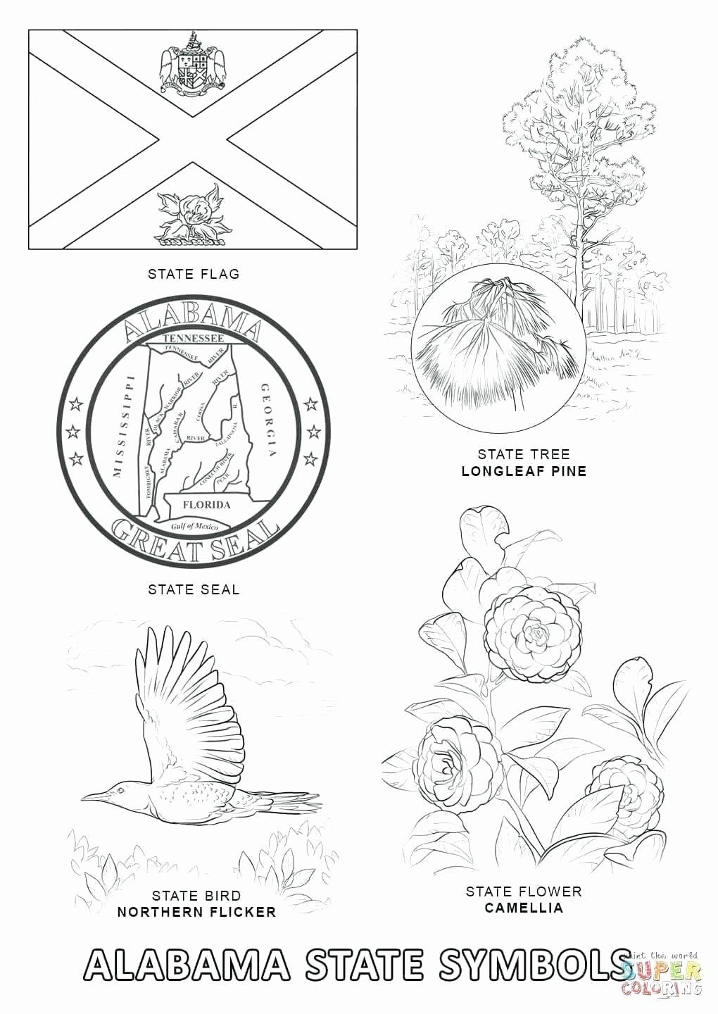 Texas State Symbols Coloring Pages Fresh Florida State Bird And