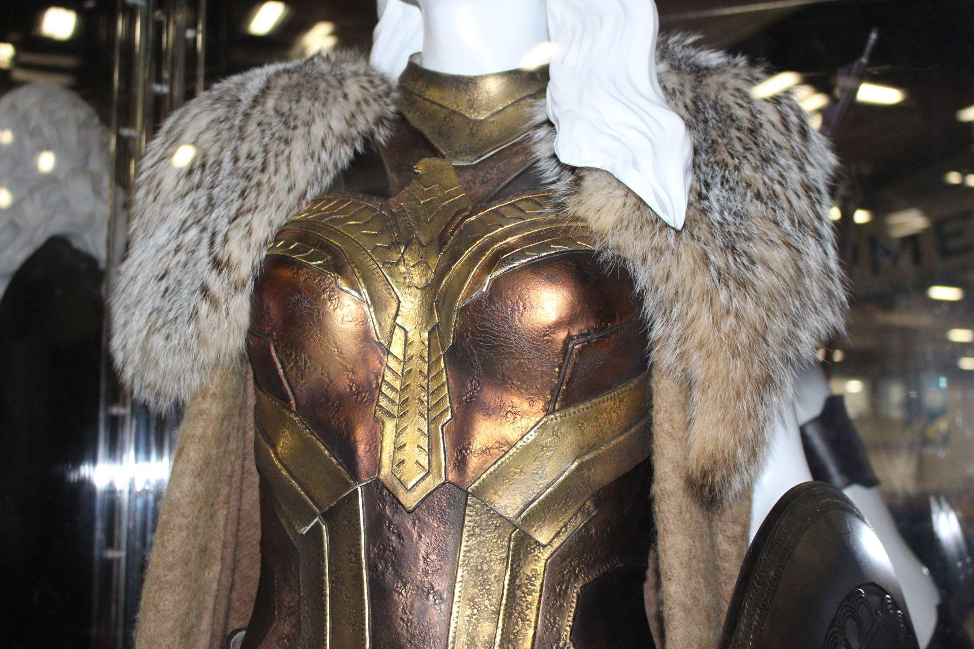 Luxury wonder woman costume-3693