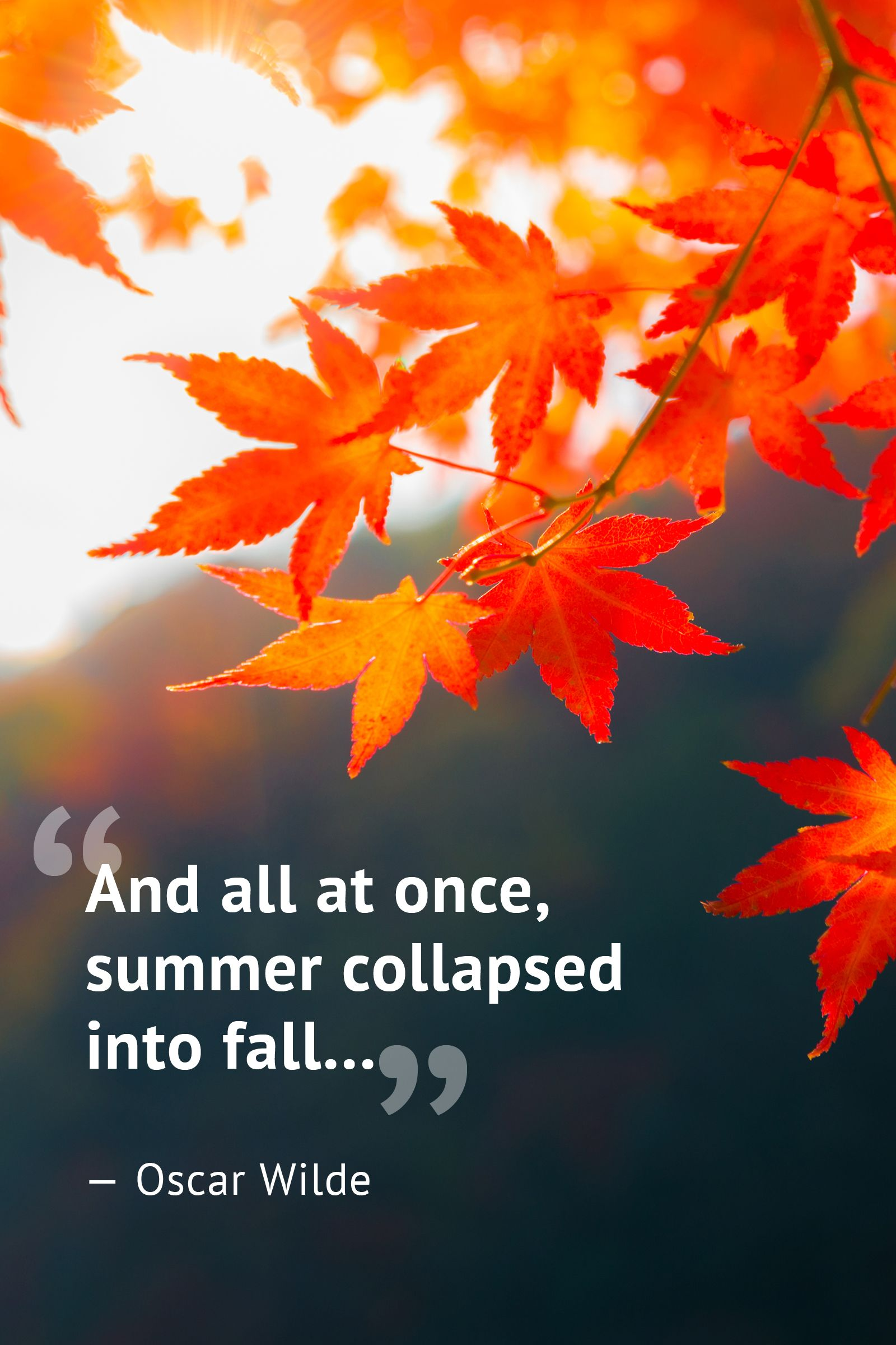 10 Beautiful Fall Quotes To Celebrate The Season Autumn Quotes