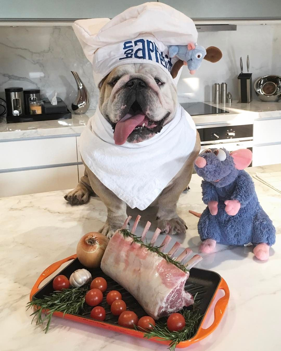 We Would Like To Hire This Chef Immediately Www Bullymake Com Via