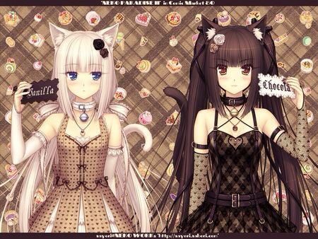 Pin On Chocola And Vanilla