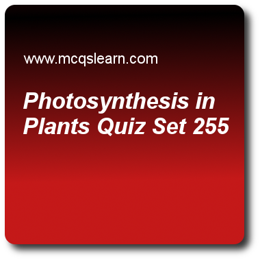 Photosynthesis in Plants Quizzes: O level biology Quiz 255 Questions ...