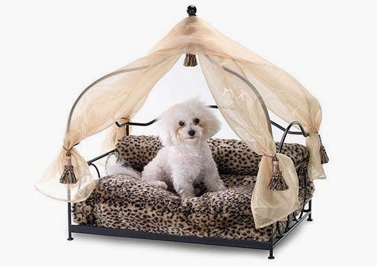 Curtain Ideas Canopy dog beds for small dogs  sc 1 st  Pinterest & Curtain Ideas: Canopy dog beds for small dogs | Bed canopy ...
