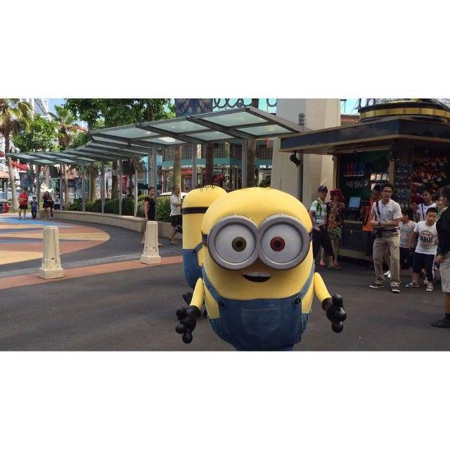 "@pearypie's photo: "" the highlight of #Pearypiemeetsminion ever!!!!!!!!!!  #Minion #RWSentosa #RWS55 #USS #UniversalStudiosSingapore #Becauseimhappy ❤️❤️❤️❤️ #pearypiearoundtheworld"" #video"