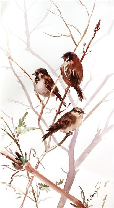 """in 10/"""" x 8/"""" Mount Watercolour Sparrow print of original painting"""
