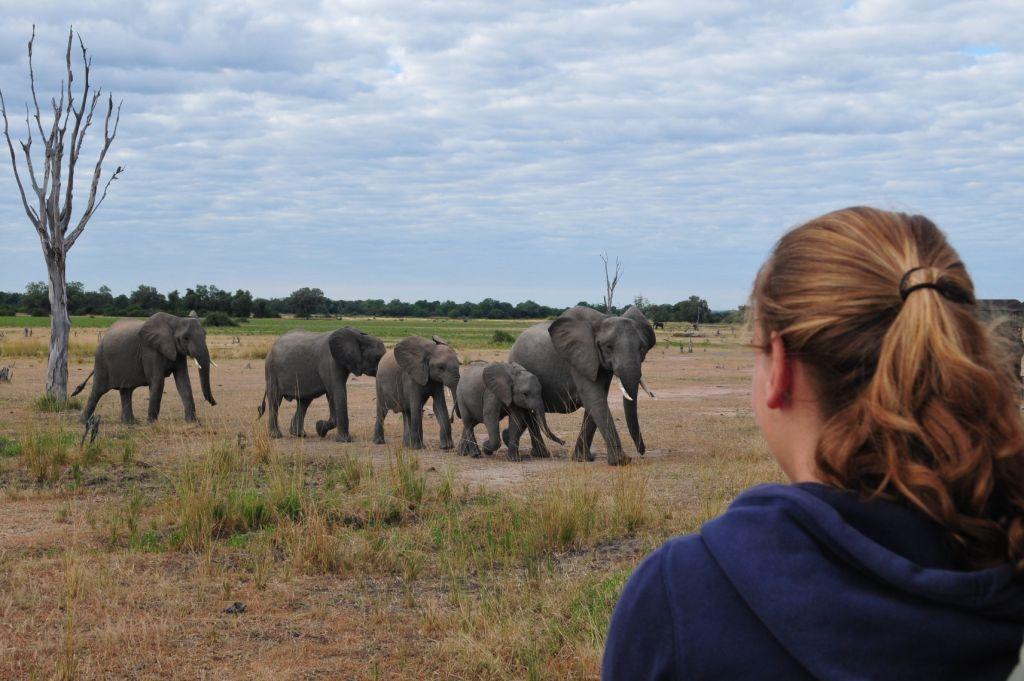 Joëlle in South Luangwa National Park Zambia -- reiservaring -- #Zambia #South Luangwa National Park http://www.mambulu.com/over-ons/reiservaringen/500-familie-van-houts-helmond.html
