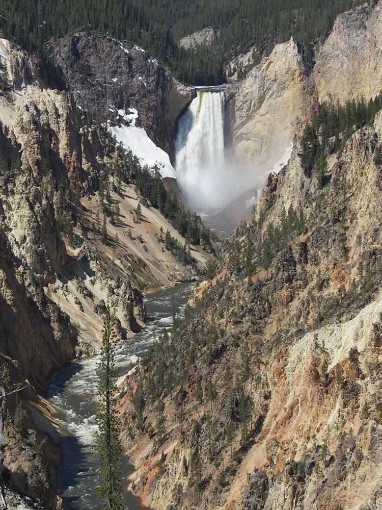 Yellowstone Park Tours Yellowstone National Park Tours