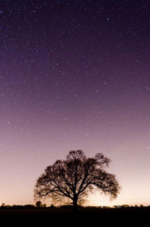 Under the starry sky.