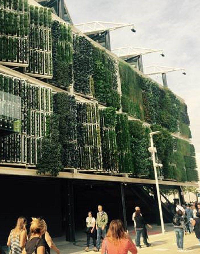 EXPO Milan 2015-Automated Vertical Farm at the USA Pavilion. Photo credit: Brett Lezon