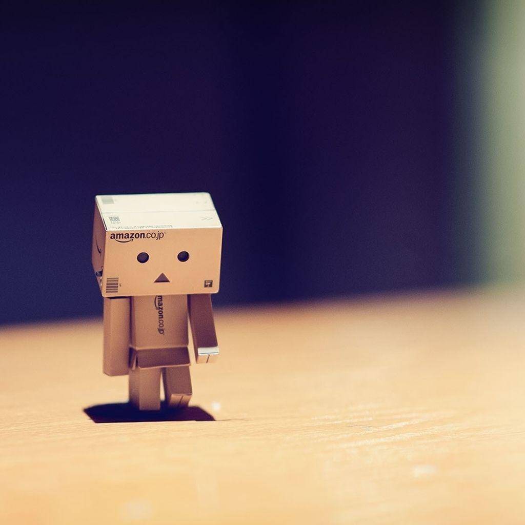 Amazon Box Danbo Alone And Sad