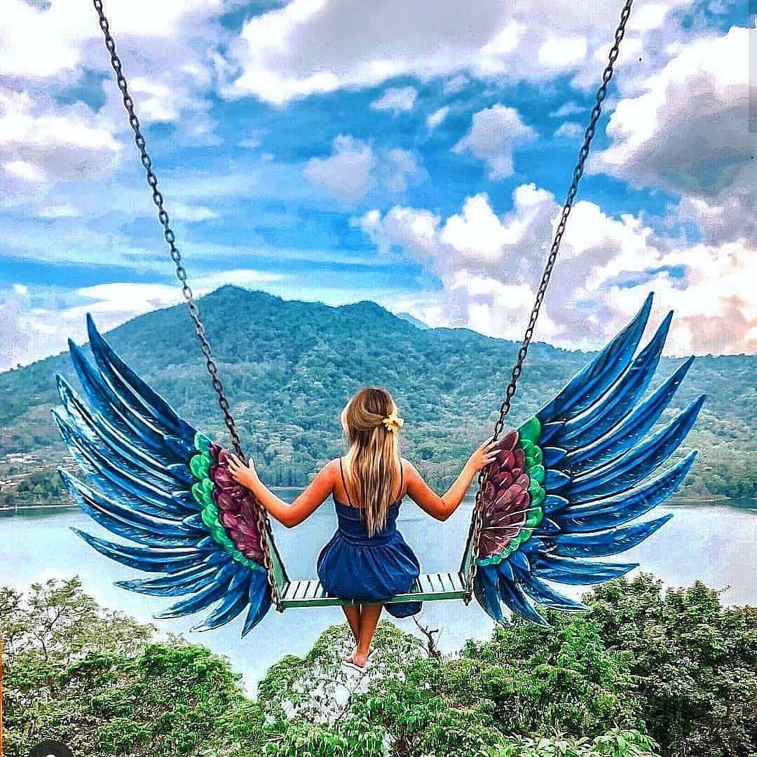 Liberdade  #bomdia #boanoite #felizesparasempre #amor #vida #deus #poesia #love #gratidão #peace #borboletas #wedding #teambride #brasil #casamento
