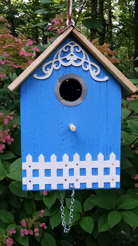 feeder feeders once eastern bird bluebirds visit at blue youtube watch