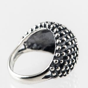 zilveren ring modern