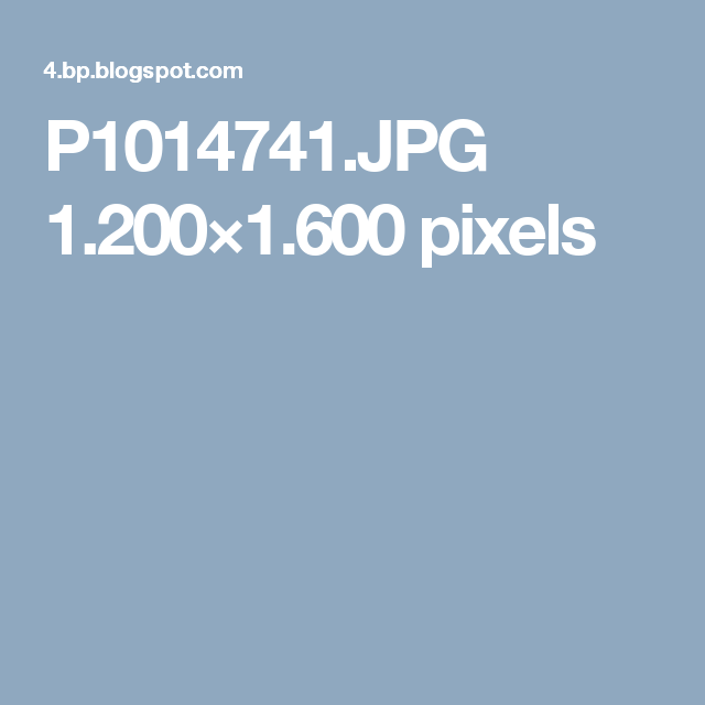 P1014741.JPG 1.200×1.600 pixels