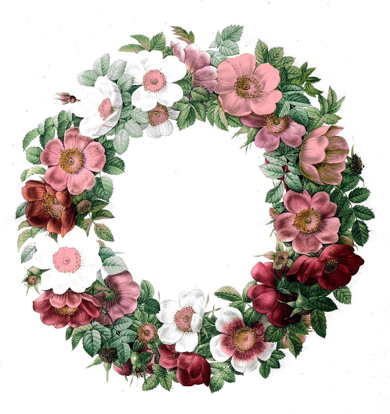 Free Vintage Clip Art - Rose Wreath | Clip art, Graphics and ...