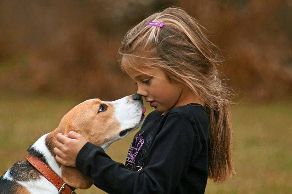 Pin by Ashly Mueller on Animals Dogs and kids, Pet