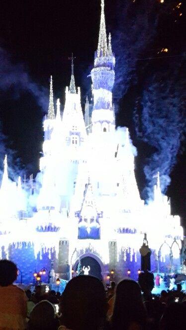 Disney world at Christmas.
