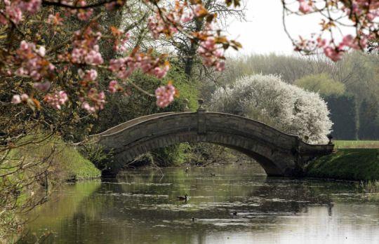 The Chinese Bridge at Wrest Park, England A Bridge joins two that - chinesischer garten brucke