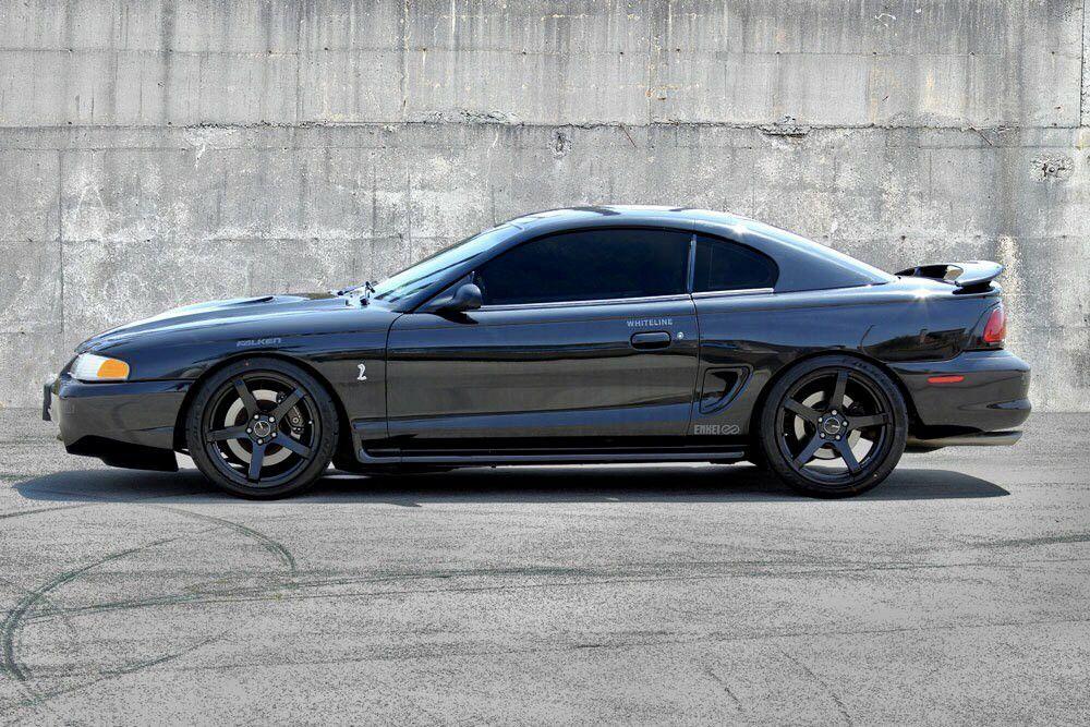 Wilkins Ray Mustangs Pin Mustang By Mustang Sn95 On Wheels