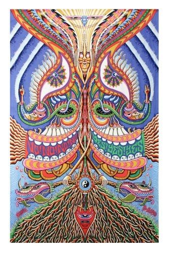 Yes Yes Yes No No No Psychedelic Trippy Tapestry 60x90 - Artwork By Chris Dyer $26.95