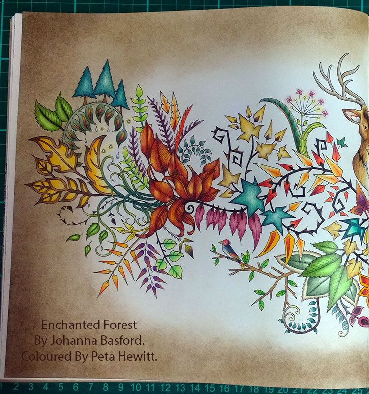 La Artistino Peta Hewitt Colour It Draw Paint Create Enchanted Forest Coloring BookJohanna