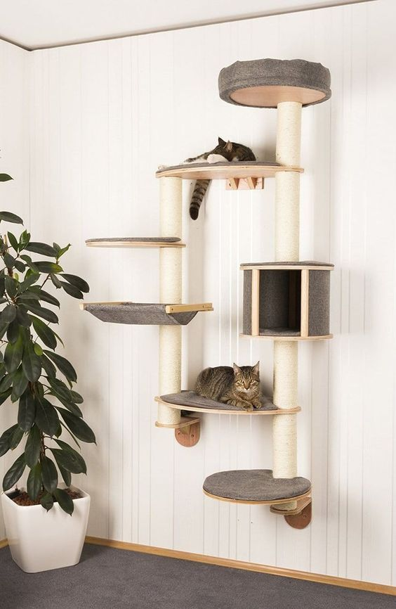 70 Brilliant Diy Cat Playground Design Ideas Your Beloved Cat Definitely Needs A Place To Play If You Have Pets In Yo Diy Cat Tower Cat Climbing Wall Cat Tree