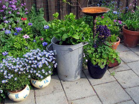 Comment Faire Pour Avoir Un Beau Jardin