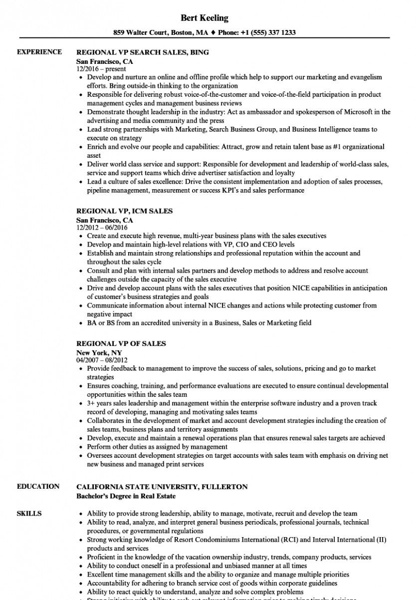 11 pattern resume vp gross sales  marketing