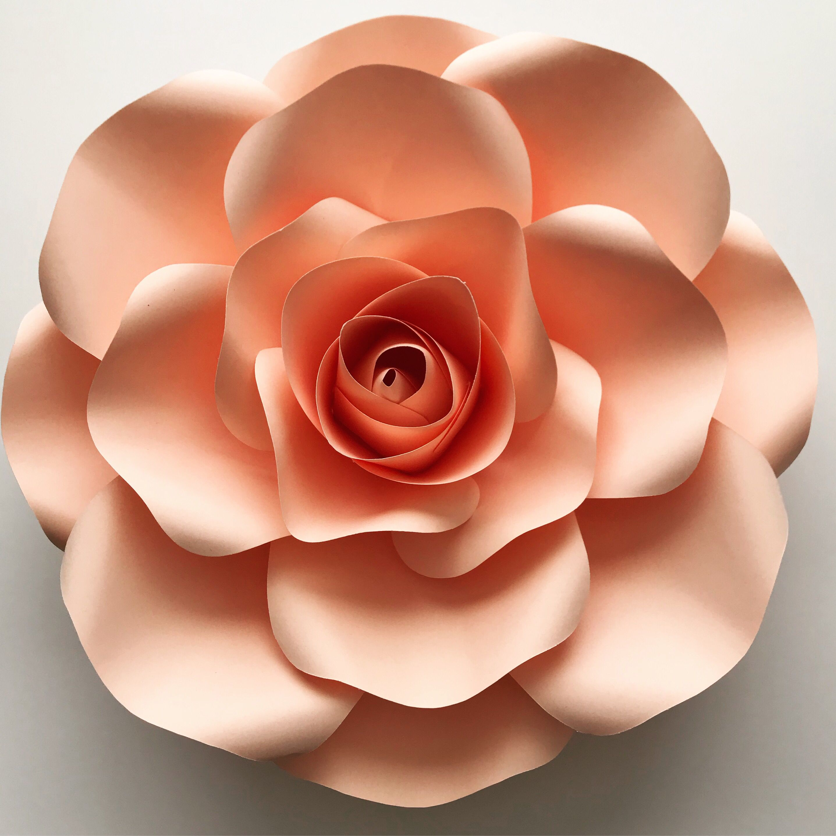 15 Medium Size Rose Using Only 12 Sheets Of Cardstock Isn T It Amazing This Template Is Available In Paper Flowers Paper Flowers Diy Paper Flower Tutorial