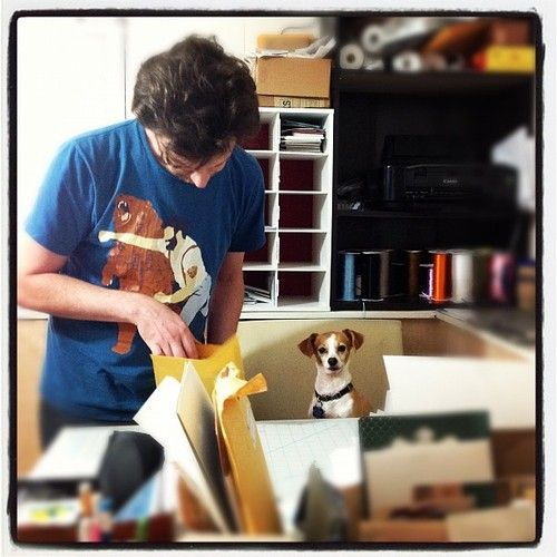 Packing up orders with our little helper, Chachy!