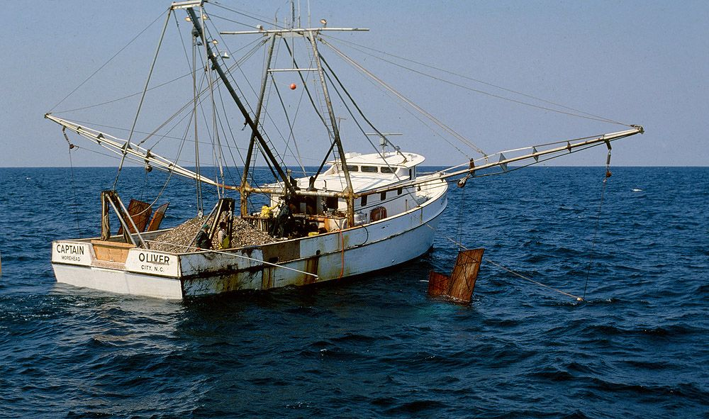 Capt oliver working scallops off nc coast commercial for Commercial fishing boats for sale gulf coast