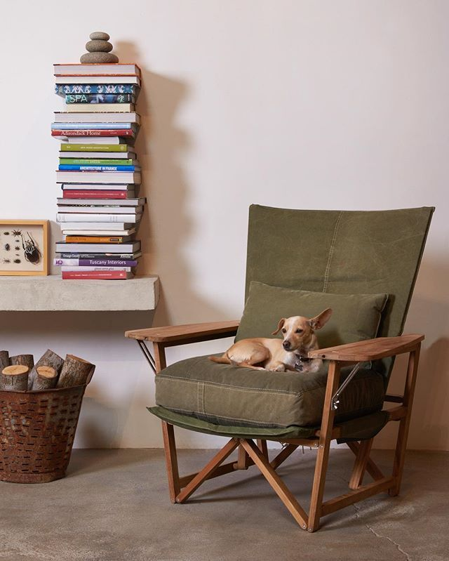 Our Walter Chair Is Back And Ready To Go In Signature Reclaimed Army Tent Dog Not Included Environmentfurniture Reclaimedarmytent Shelterhalf