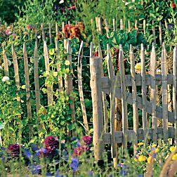 gestaltungstipps für ein immerblühendes beet | rüben und garten, Garten und erstellen