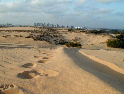 נקודות מושלמות לסיגריה בטבע   Travel, Ashdod, Outdoor on Dune Outdoor Living  id=55203
