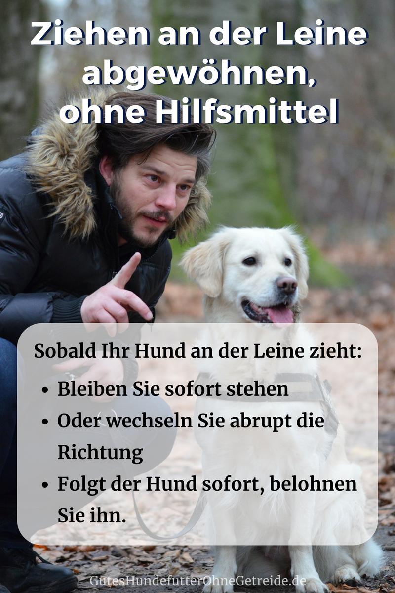 Hund Zieht An Der Leine Leinenfuhrigkeit Tipps Und Hilfe Hunde Hunde Korpersprache Hundchen Ubung