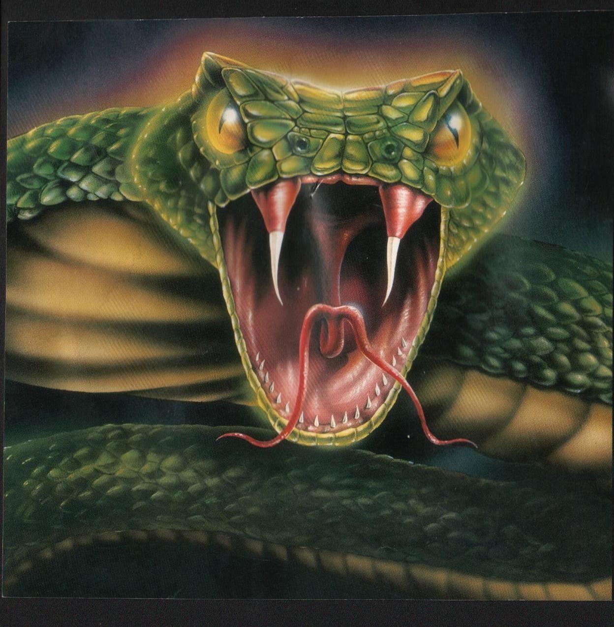 Оскал змеи картинки