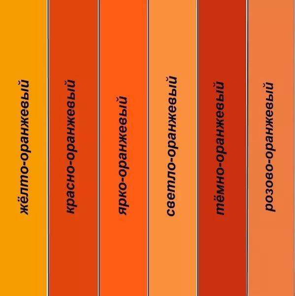 Все оттенки оранжевого цвета