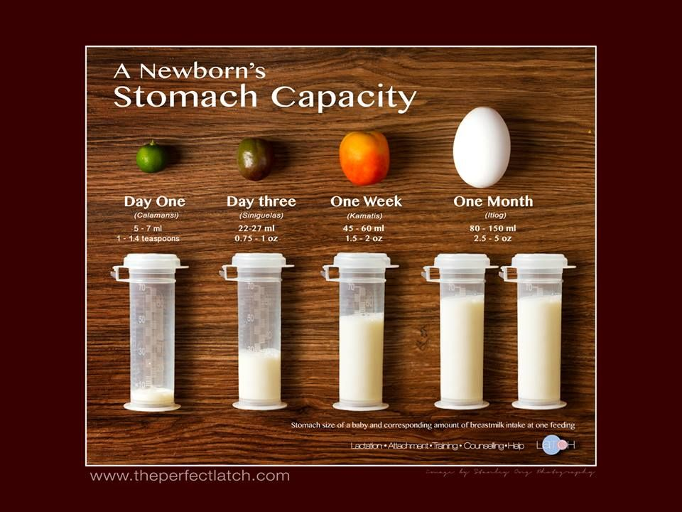 Size and capacity of a newborn's tummy compared to local food ...