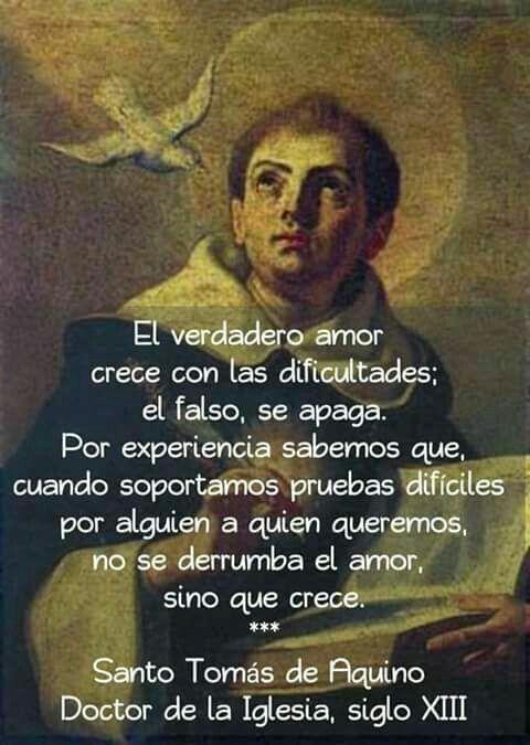 Santo Tomás De Aquino Frases De Santos Frases Religiosas