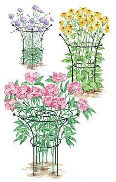 Essex Plant Support Peony Ring Gardener S Supply Plant