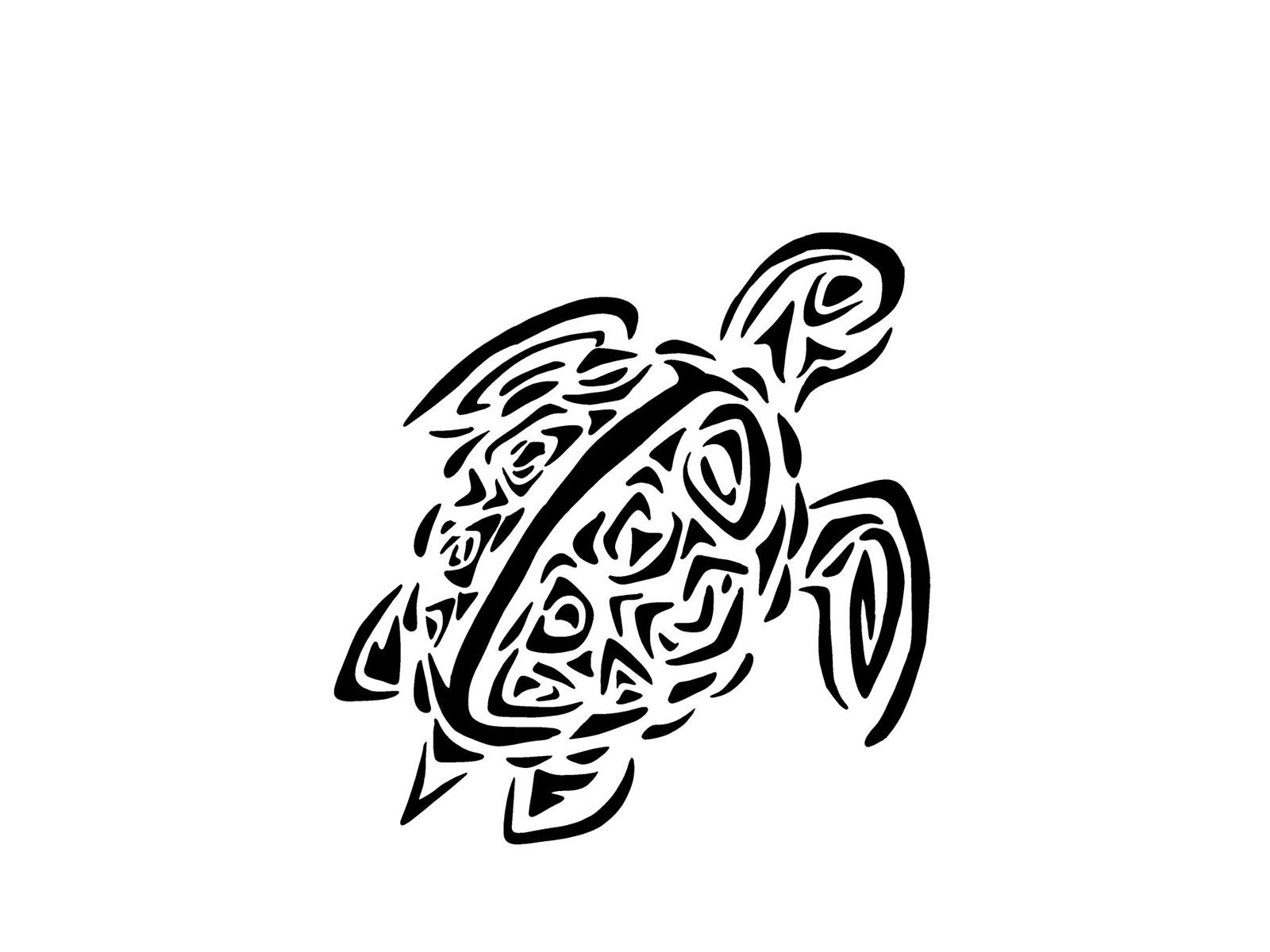 Turtle Line Drawing Tattoo : Sea turtle tribal little tattoo design good