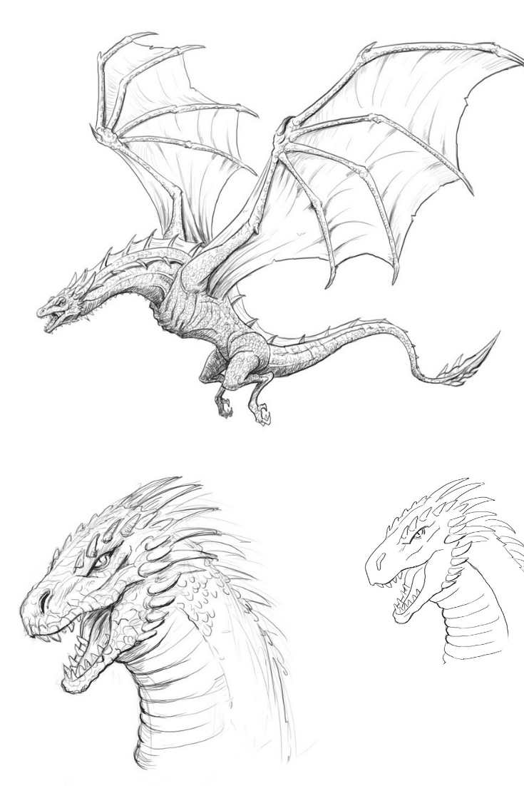 How to Draw a Dragon, Step By Step and Easy to Follow