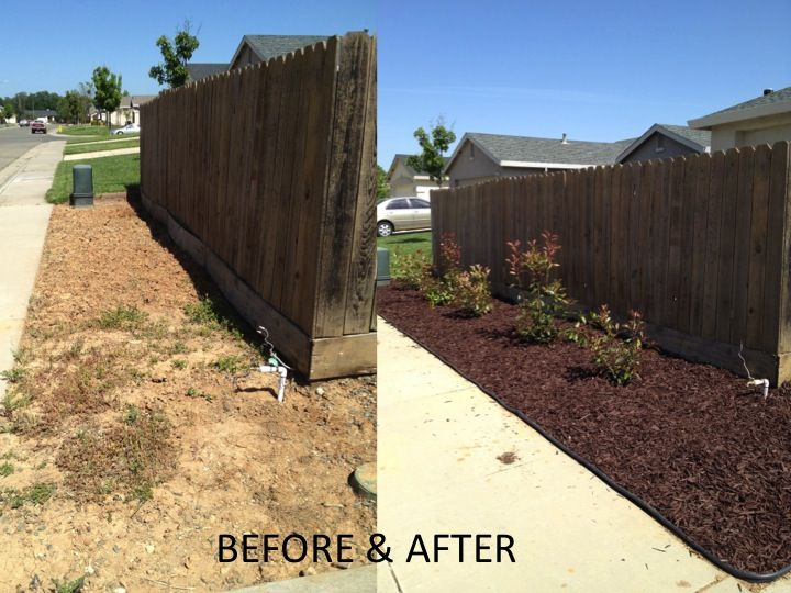 After pulling out all of the plants and rocks we finally finished! 160.00 for everything!