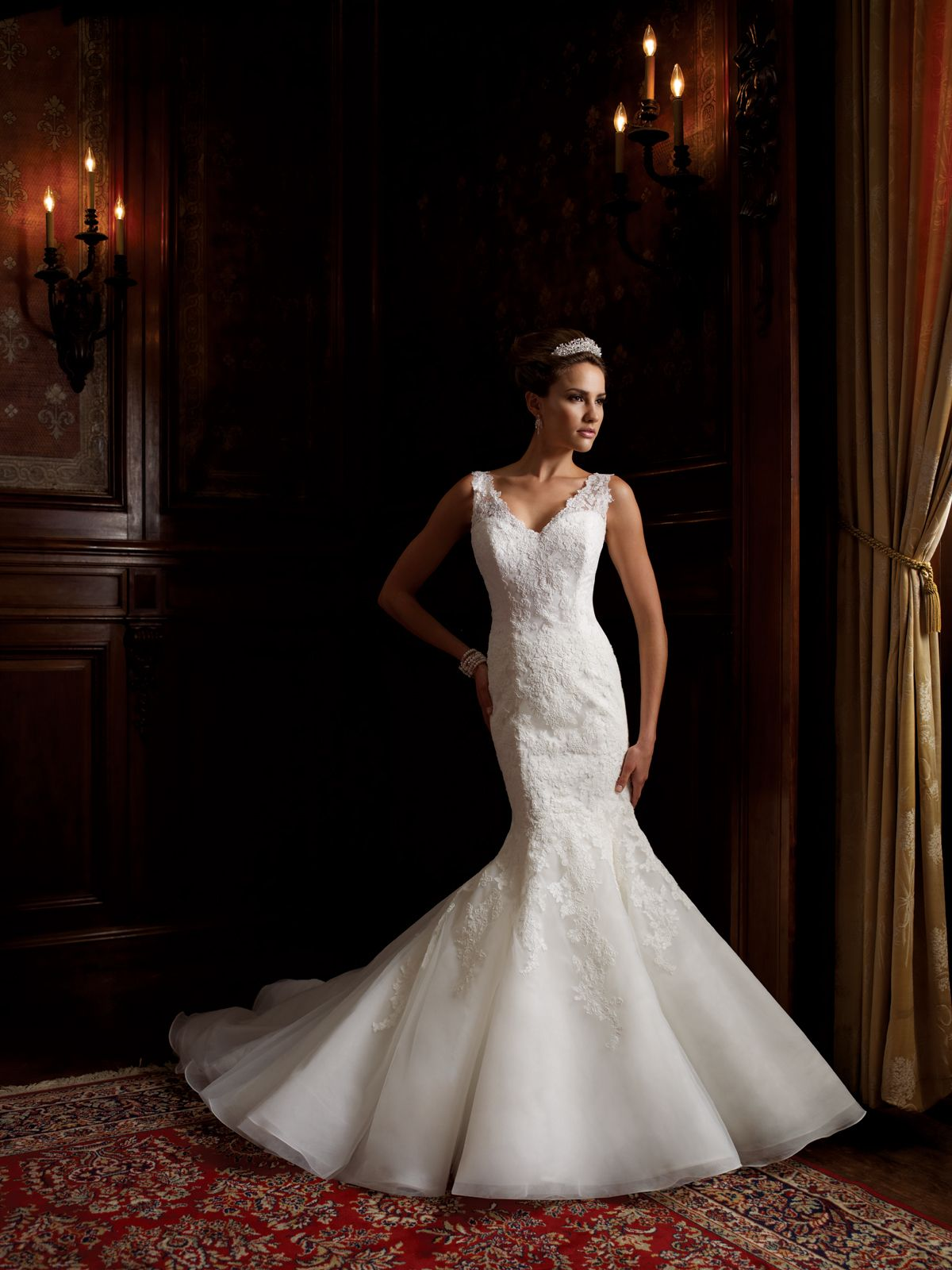 Simple lace dress styles  Wedding dresses and bridals gowns by David Tutera  Lace sleeves