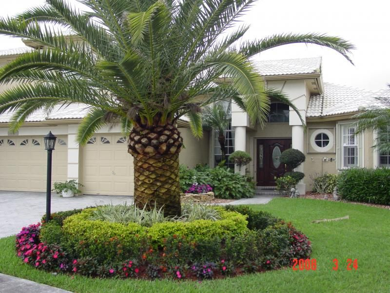 South florida tropical landscaping ideas our services for Florida landscaping ideas for front yard